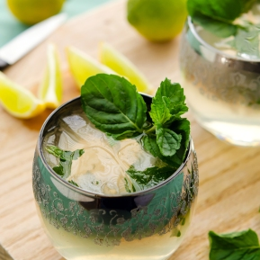 Mojito / Happy Herbivore: Light & Lean