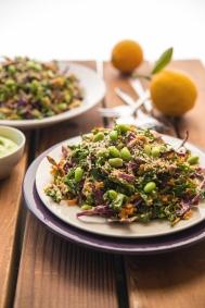Rainbow Salad Greens 24/7 Vegan Recipes